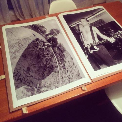Gf_bernie_prints_big